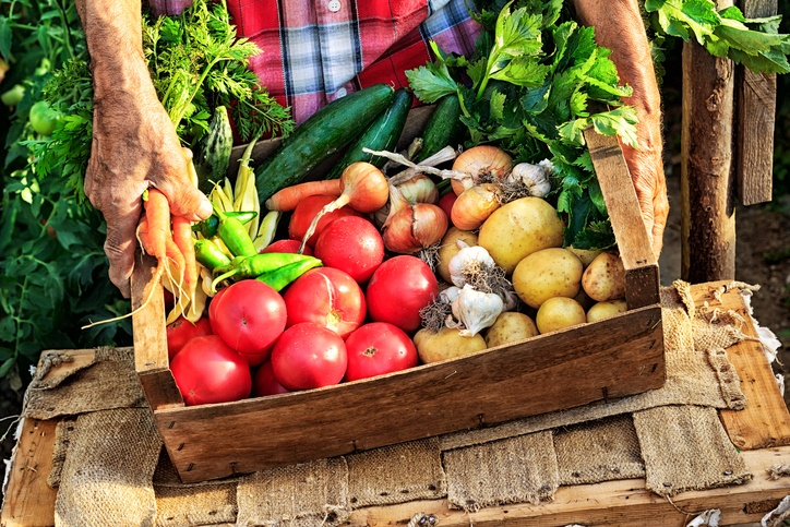 Man put wooden crate with fresh vegetables - tomatoes, carrots, garlic and potatoes, onion and cucumber, on table.