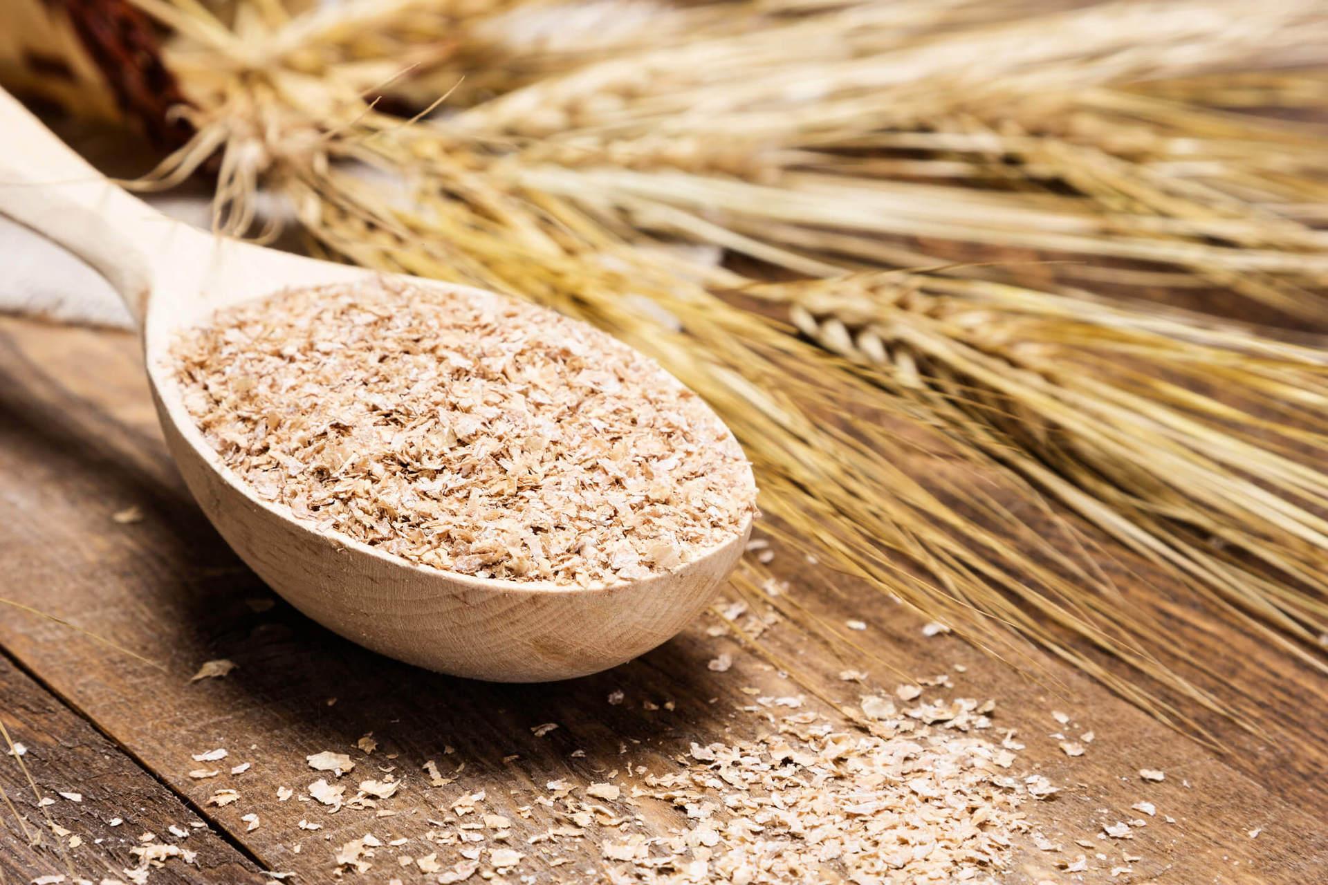 as diferenças entre germe de trigo fibra de trigo e farelo de trigo