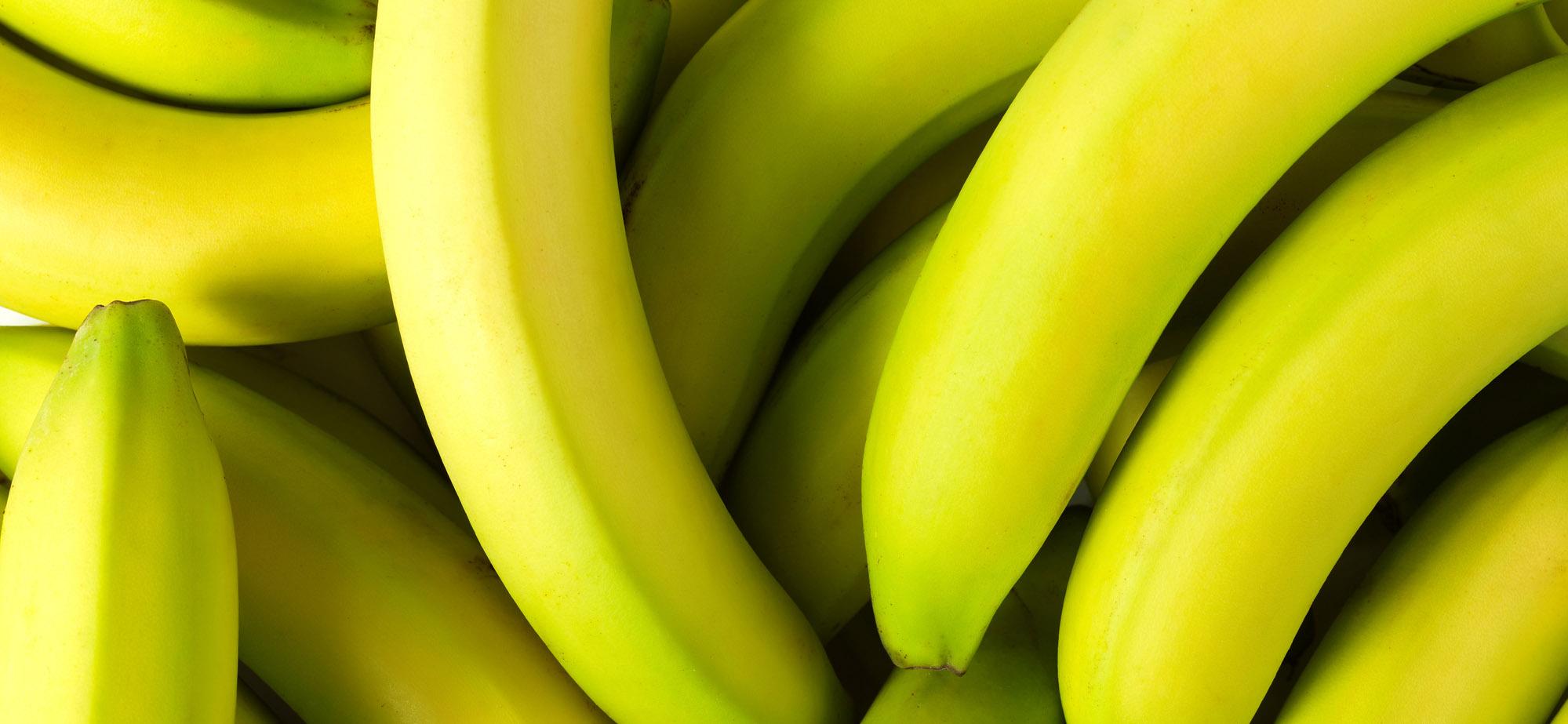 A Males Na Vida Que Vem Para O Bem: Hormônios Da Felicidade: Quais São E O Que Comer Para