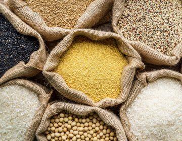 O que são grãos ancestrais?