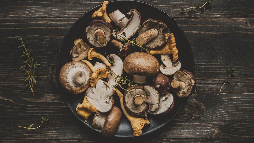 cogumelos em uma dieta saudável